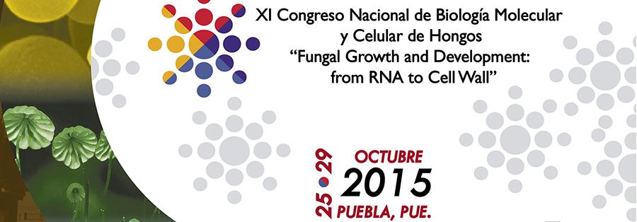 XI Congreso Nacional de Biología Molecular y Celular de Hongos
