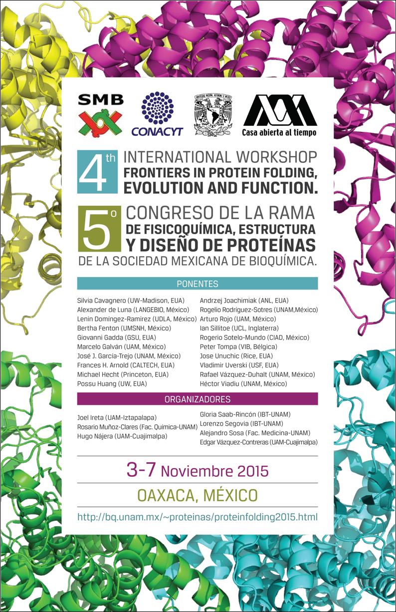 Poster Quinto Congreso de la Rama de Fisicoquímica, Estructura y Diseño de Proteínas
