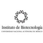 Logo UNAM IBT