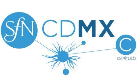 Logo CCDMX