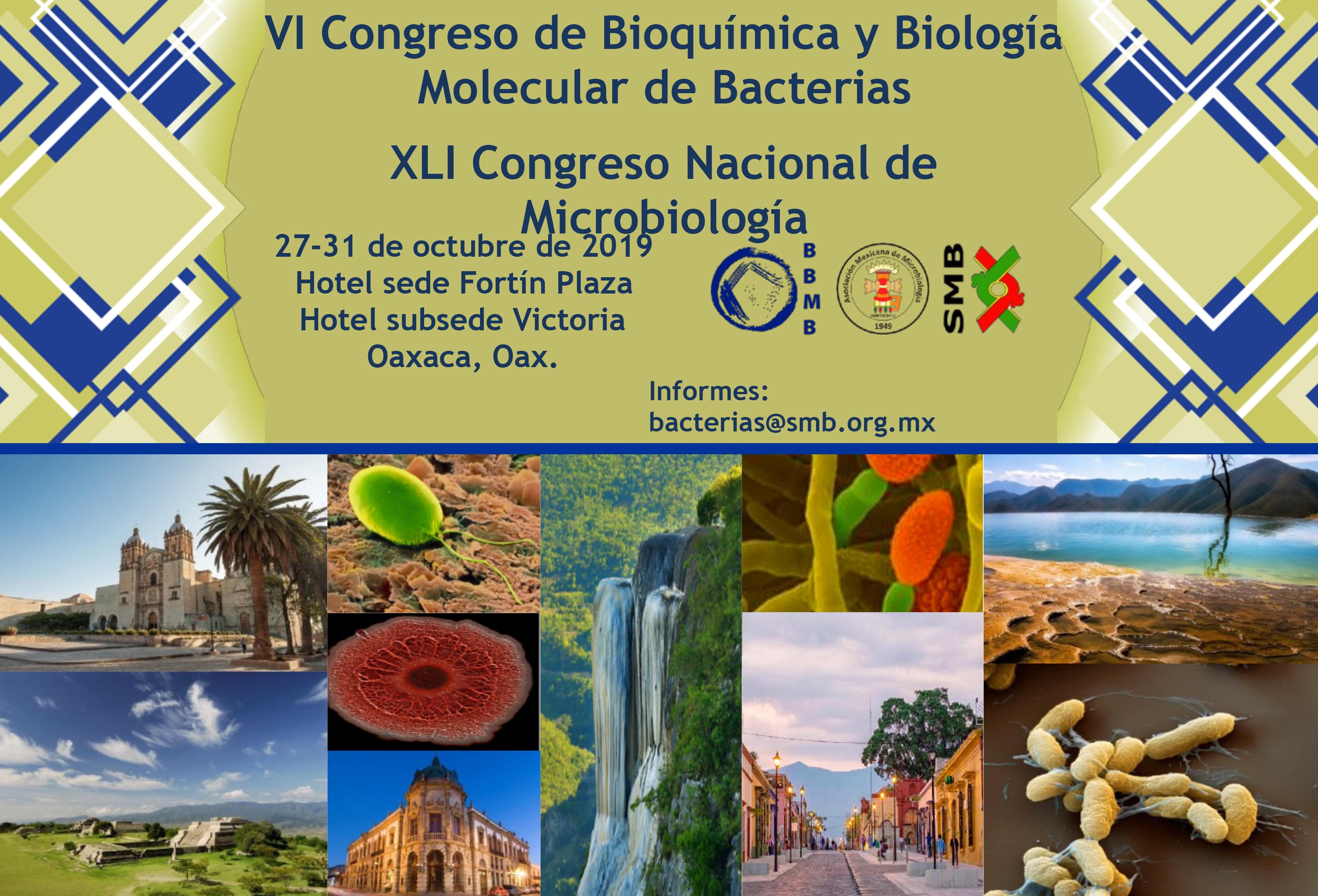 VI-Congreso-de-Bioquimica y Biología Molecular de Bacterías