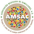 Logo AMSAC
